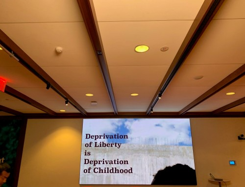 United Nations Task Force calls on Member States to end children's deprivation of liberty
